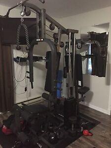 Multisport Weight Bench