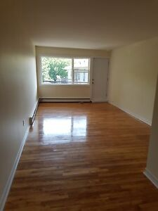 BEAUTIFUL COMPLETELY RENOVATED 1 BDRM ON QUINPOOL RD. NOV.  1ST