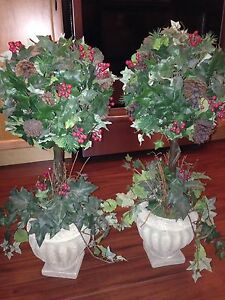 Two Christmas Topiary Trees