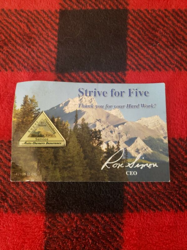 Auto-Owners Insurance Pin Strive for Five Rare Silvertone Collectible