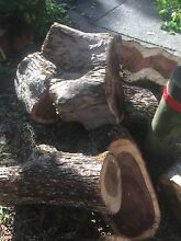 Free clean firewood Lane Cove North Lane Cove Area Preview