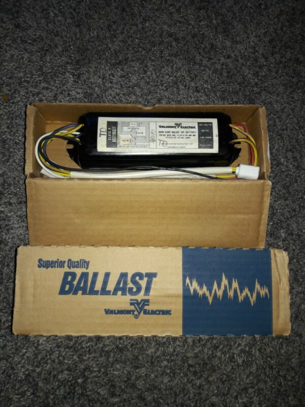 2 Valmont Electric Superior Quality Ballast Class P 8G1110G11