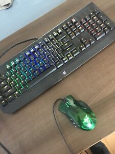 Razer Chroma Keyboard Naga Mouse