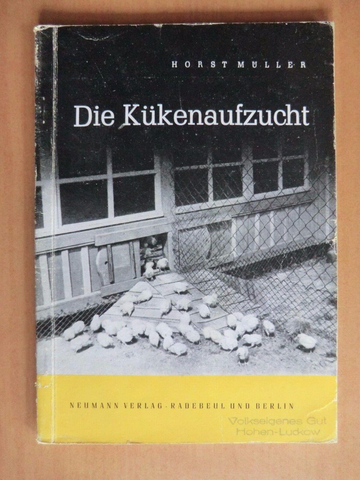 DDR Buch 1953 Müller Kükenaufzucht Futter Stall Tränke Auslauf Geflügelzucht