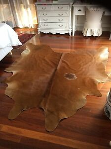 Beautiful large cow skin hide Woy Woy Gosford Area Preview