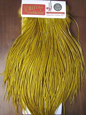 Fly Tying Whiting Schlappen White dyed Brown