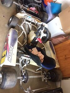 Two ARC100 water cooled go karts not running Mawson Lakes Salisbury Area Preview