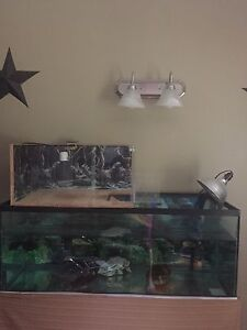 70 gallon fish tank with fx5 fluval filter system