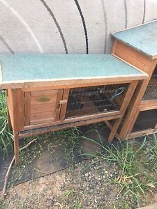 Rabbit Chook guinea pig hutch Maitland Maitland Area Preview