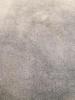 Carpet suitable for large bedroom - 2 years old / great condition