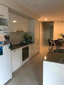 Big Rooms & Own Bathroom for Rent close to SCUH Sunshine Coast Region Preview