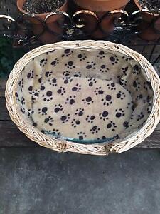 Wicker cat's basket in good condition. Klemzig Port Adelaide Area Preview