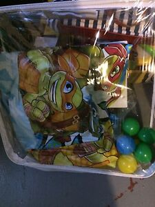 Ninja Turtle Ball Pit