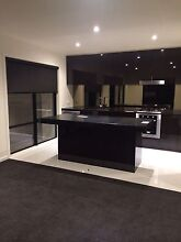 A Big Single bedroom is available Boroondara Area Preview