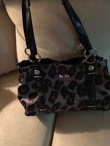 Coach Purse | Print | Authentic | gently used $150