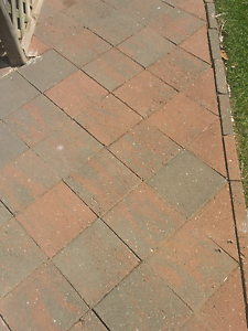 WANTED! PAVERS AS IN THE PHOTOS Hillbank Playford Area Preview