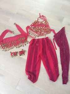 Beautiful Bollywood style dance costume- ages 7-10