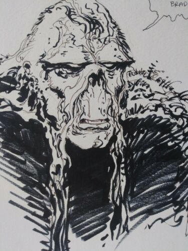 ORIGINAL SKETCH SWAMP THING RICK VEITCH 12x9 PERSONALIZED