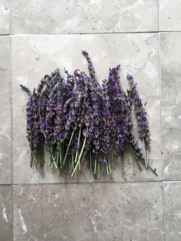 Organic Natural Air Dried California USA Lavender Flower Bunches