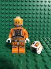 Luke Skywalker Luke Skywalker LEGO Minifigures