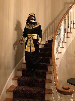 pharaoh costume in men
