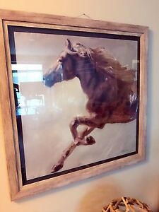NEW HORSE ART PICTURE