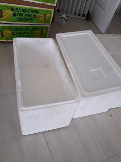 Trays and Styrofoam boxes