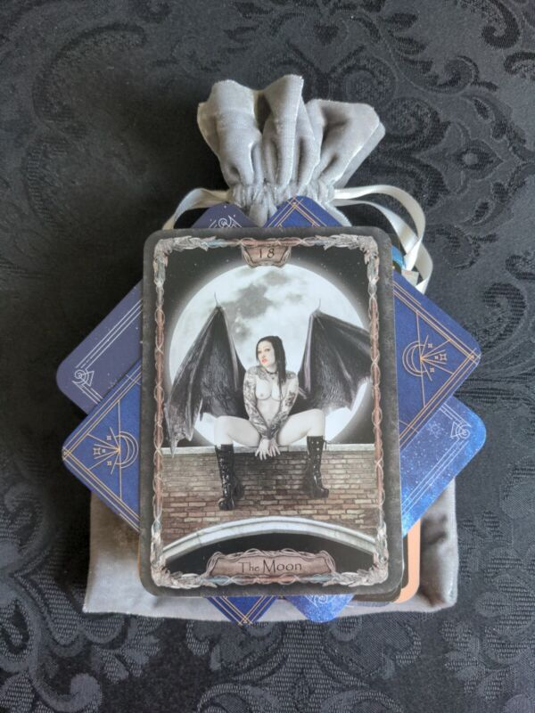 100 Mysterious MAGICAL MIX Lot Tarot/Oracle Cards in a SILVER Velvet Bag OCCULT