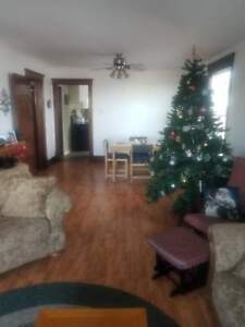 606 Lancaster Avenue (Downstairs)