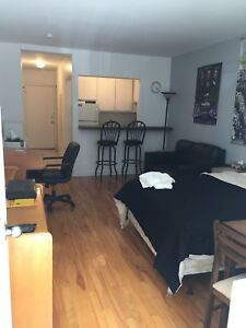Large furnished 2&1/2 Loft style studio apartment; McGill Ghetto