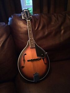 Washburn Mandolin - good condition NEED GONE