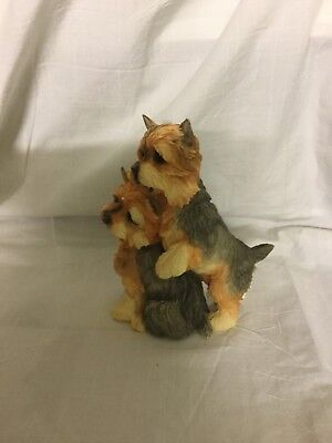 Country Artist Yorkshire Terrier