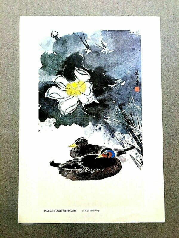 Vintage Chinese Ducks Under Lotus Painting Print by Chiu Shou-cheng Mid Century