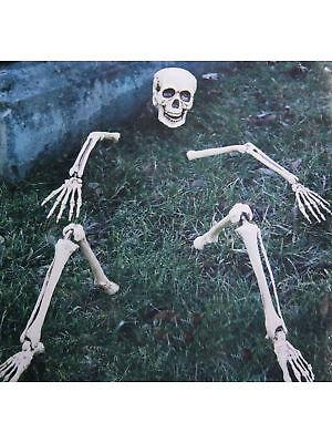 koration Horror Halloween Skelett (Halloween Skelett-teile)