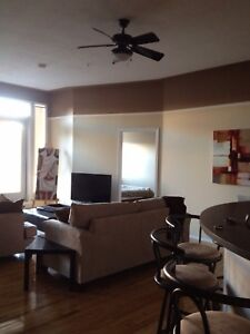 2 bedroom/2 bathroom fully furnished condo downtown