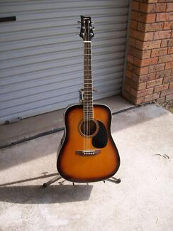 Ashton D-25TSB acoustic guitar.