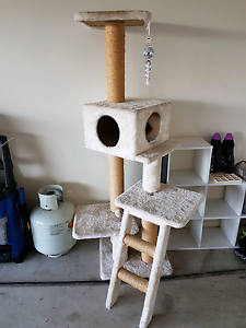 Cat scratch post play gym Sandstone Point Caboolture Area Preview