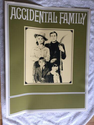 "Rare ""Accidental Family"" poster NBC promo 1967 Jerry Van Dyke 22x28"" TV show"