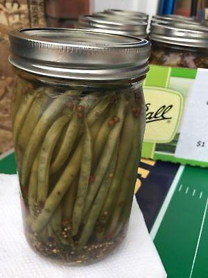Homemade Spicy Vodka-Pickled Green Beans, Quart
