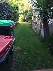 Lawn mowing and outdoor care ballina area- East Ballina Ballina Area Preview