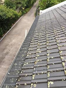SGC Sydney Gutter Cleaning Lane Cove Lane Cove Area Preview