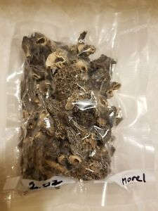 2 ounces of dried morel mushrooms from Northeast Washington.