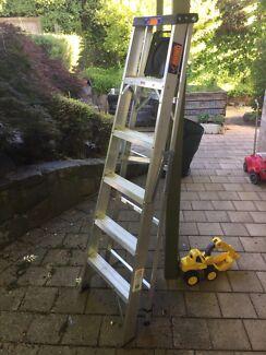 Rhino 1.8 ladder