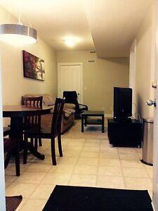 3 Bedroom Basement Suite for Rent- Tons of Parking