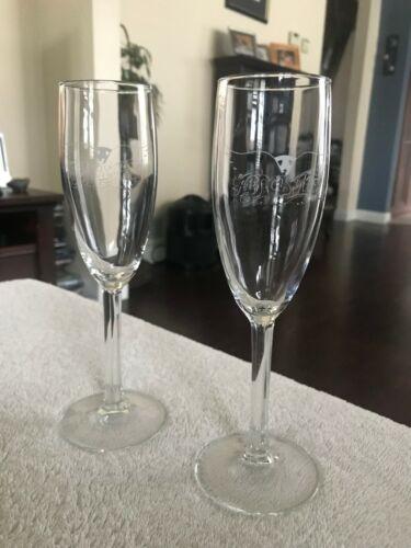Aerosmith Champagne Flutes, Glasses