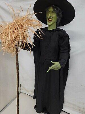 Life Size The Wizard Of Oz Witch Halloween Animatronic Gemmy Spirit Halloween