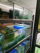 aquarium fish tank 2 ft Para Hills Salisbury Area Preview