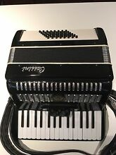 CASSINI ACCORDION Newtown Inner Sydney Preview