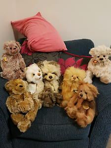 Collectable Charlie bears Maroubra Eastern Suburbs Preview