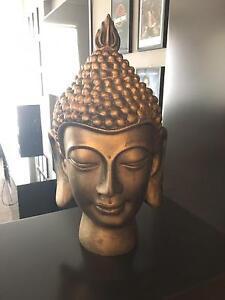 Gold Buddha Head Mount Annan Camden Area Preview